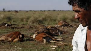 Paraguay drought 2000